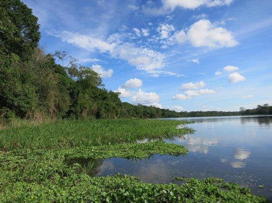 Muyuna Amazon Lodge : Navegando por los alrededores
