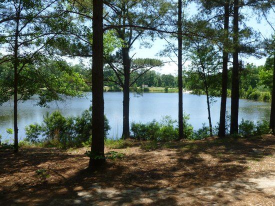 Southeast Park: Here's a pretty view from disc golf hole #9