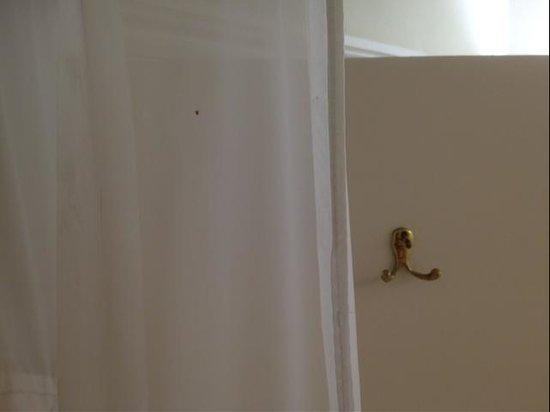 Holiday Inn Ashford - Central: verdreckter Duschvorhang und loser Handtuchhaken