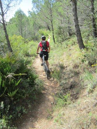 Andalucian Cycling Experience Day Trips: Singletrack mountain biking Andalucia