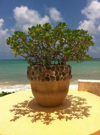 Fairmont Mayakoba: My favorite pot!