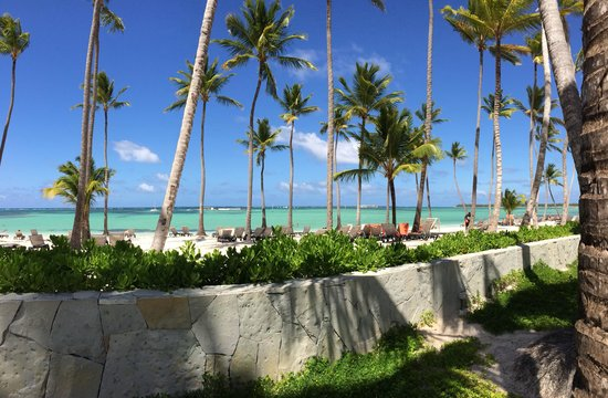 Barcelo Bavaro Beach - Adults Only : White sands....