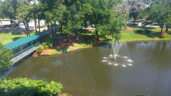 Radisson Resort Orlando-Celebration : Vista do apartamento