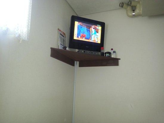 Hotel Yanagibashi: la tv de la habitacion