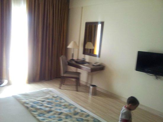Fortune Pandiyan Hotel: Room view