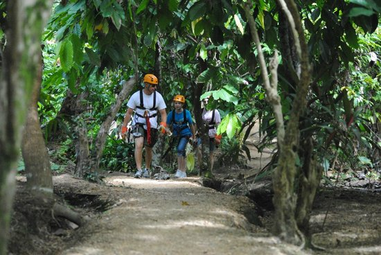 Canopy Adventure Zip Line Tours : hiking in the Jungle