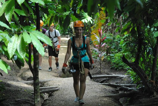 Canopy Adventure Zip Line Tours : walkimg between the trees