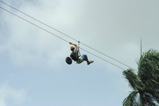 Canopy Adventure Zip Line Tours : aaahhhhhhhhhh.....................