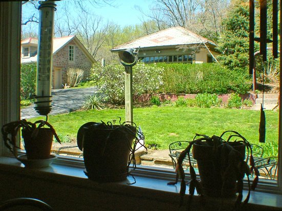 Amethyst Inn & Cottages: View of backyard from kitchen window