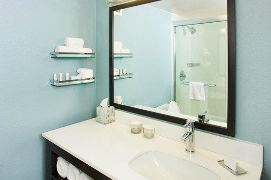 Residence Inn Washington, DC/Foggy Bottom : Guest Room Bathroom