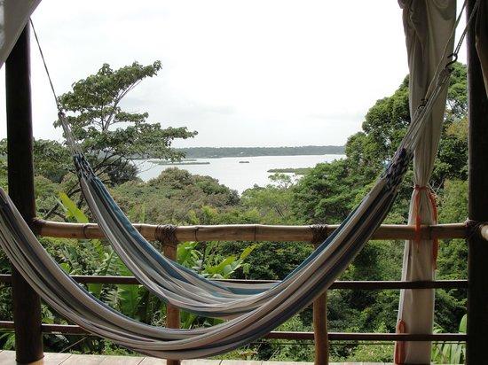 La Loma Jungle Lodge and Chocolate Farm : Upper cabin view