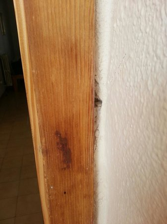 TRH Magaluf: Door Damage