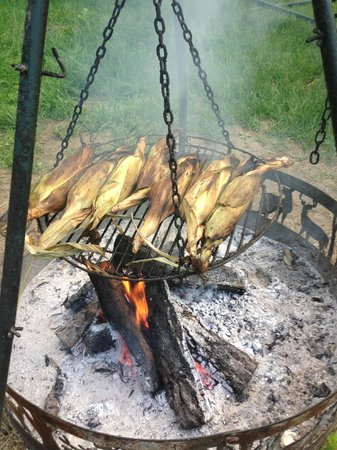Tierra Linda Bed and Breakfast: cooking dinner on bon fire