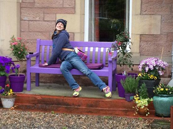 Chrialdon House: Thistle purple everywhere!