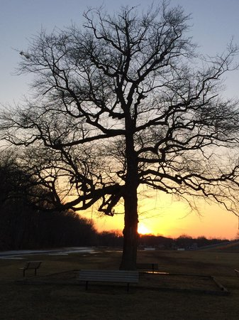 Laurel Acres Park: Winters sunset