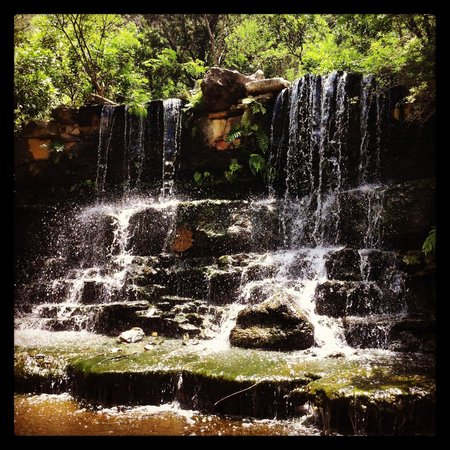 Zilker Botanical Garden: Waterfall in the Dinosaur Garden.