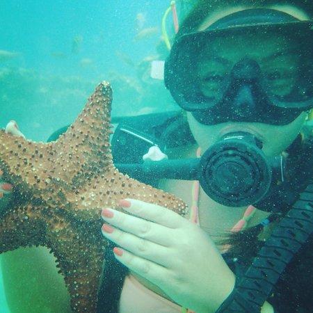 SeaPro Water Sports: Starfish!
