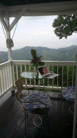 Strawberry Hill : Balcony of Tree