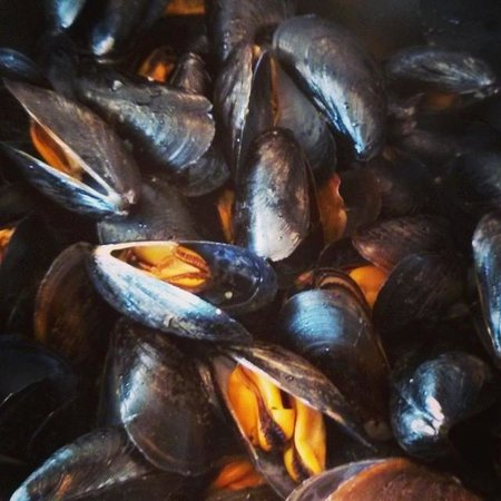 Top of the Park Restaurant: The Delicious Looking Herb and Garlic Mussels