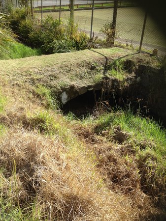 Globetrekkers Lodge : The Oldest Bridge in NZ