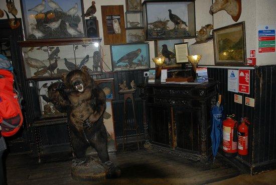 The Drovers Inn >> Drovers Inn and Pub, Inverarnan - Restaurant Reviews, Phone Number & Photos - TripAdvisor