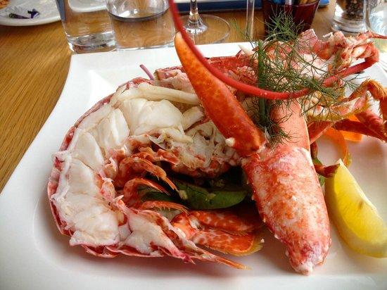 Skerries Bistro: Lobster lunch