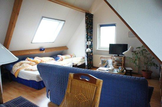 B&B den Haesell: room