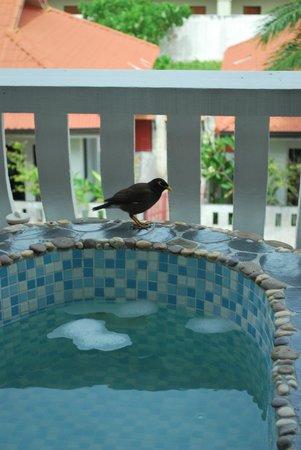 The Old Phuket: idromassaggio sul terrazzo
