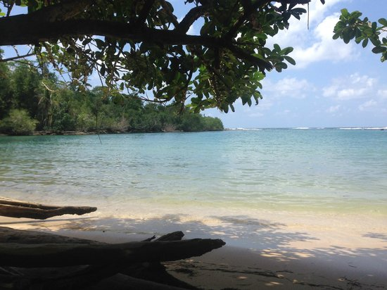 Playa Bluff Lodge: Playa la piscina