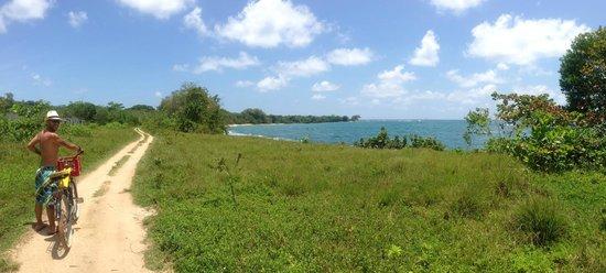 Playa Bluff Lodge: Recorrido en bici por playas cercanas al hotel