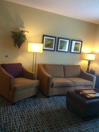 Homewood Suites by Hilton Fort Myers Airport / FGCU: Modern,Renovated Rooms,WOW!
