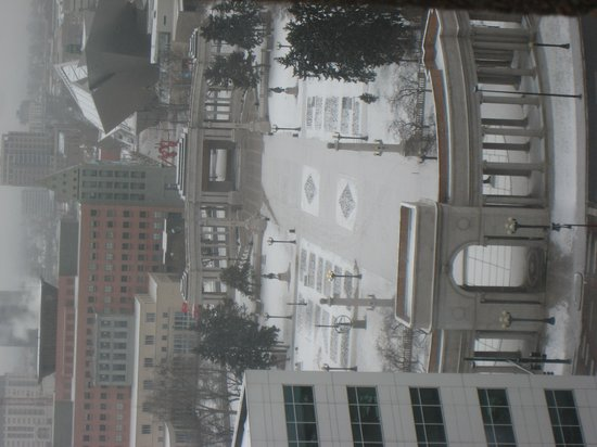 Sheraton Denver Downtown Hotel: View 2