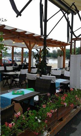 Maestro Café and Bistro : Maestro Lounge Bistro