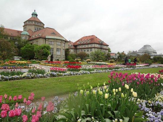 Botanischer Garten Muenchen-Nymphenburg: В ботаническом саду Мюнхена