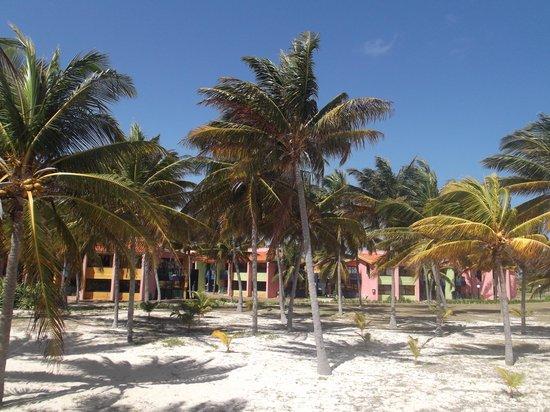 Bravo Caracol: Visitamos el sitio el 13 de marzo 2012.