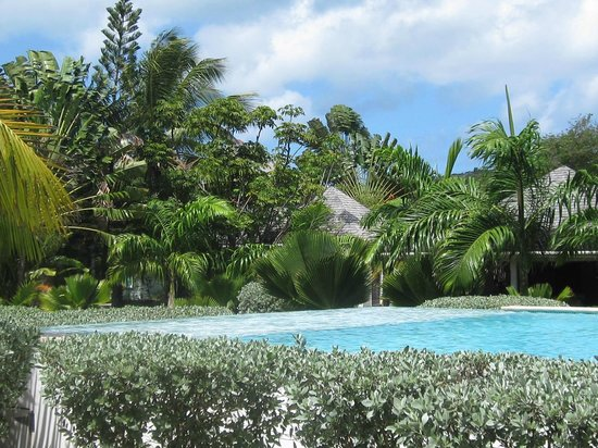 Coconut Beach Club : View from Pool