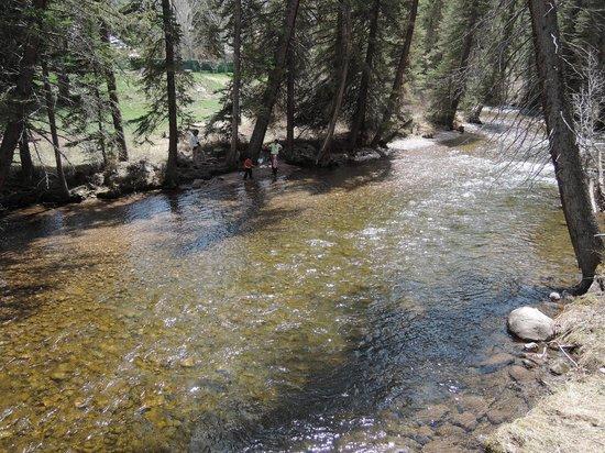 Betty Ford Alpine Gardens : Gore Creek runs through the park area