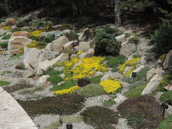 Charmant Betty Ford Alpine Gardens: Alpine Gardens