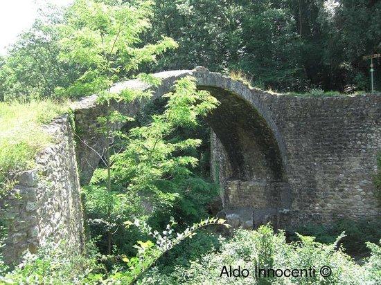 Altra immagine del Ponte della Pia