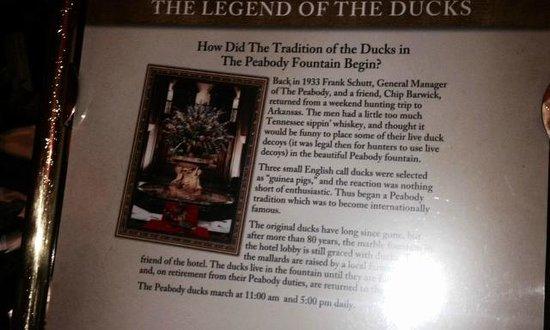 The Peabody Memphis: Peabody Ducks