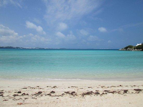 Shelly Bay Beach: Gorgeous!