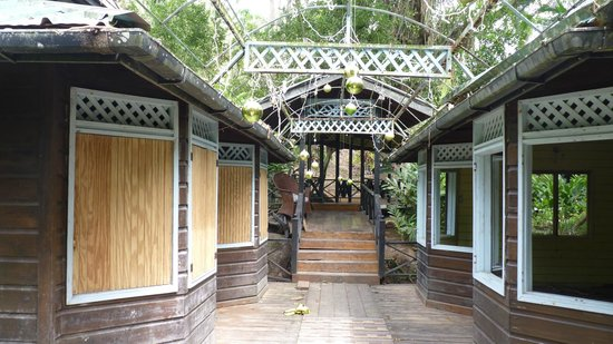 Arnos Vale Waterwheel and Nature Park : Arnos Vale with Christmas decorations in May!