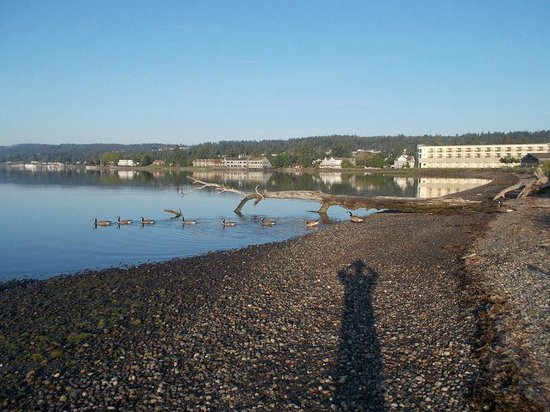 Best Western Plus Silverdale Beach Hotel : Beach View