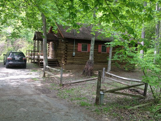 Cheat River Lodge and Riverside Cabins: The Swinging Vine