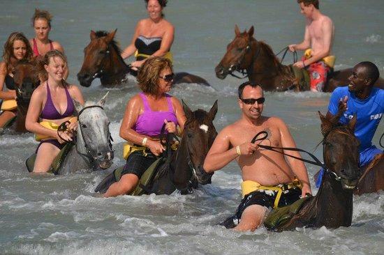 Chukka Caribbean Adventures : Chukka horseback ride