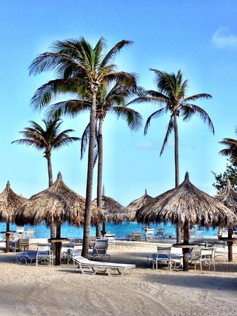 Marriott's Aruba Surf Club : nice beach area but hard to enjoy because of so many rules and regulations regarding the chairs