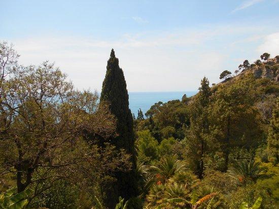 Giardini Botanici Hanbury: panorama