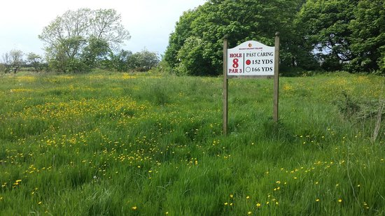Solway Holiday Village: the overgrown golf course