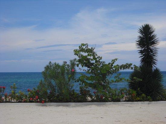 Secrets St. James Montego Bay: beach