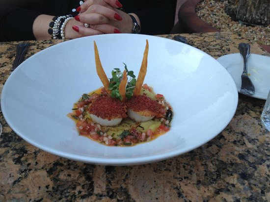LaSalette Restaurant: day boat scallops on polenta